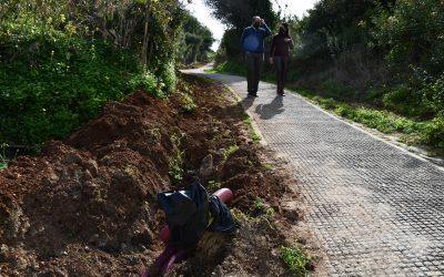 Se inicia el acondicionamiento de la Cañada Real de Guadiaro con la instalación de ocho farolas led