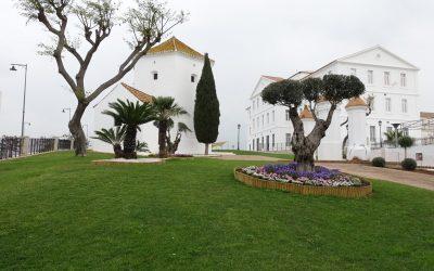 Trabajos de mejora de zonas verdes en La Ermita, que concluirán en pocos días