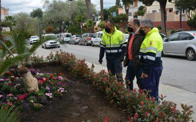 Parques y Jardines mejora la estética de la Barriada de la Paz con plantas de temporada y autóctonas